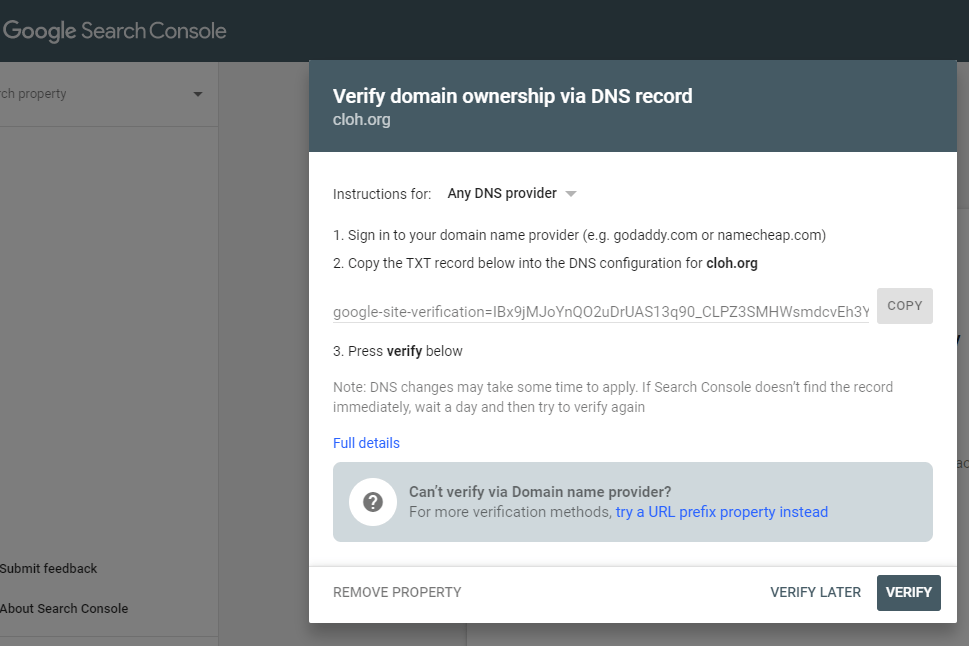 Screen from Google about verification of DNS record